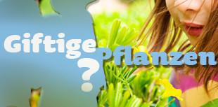 giftigepflanzen310x153